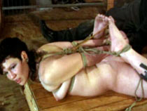 Tied up and vibrated
