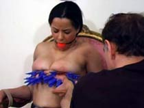 Experimental tit torture