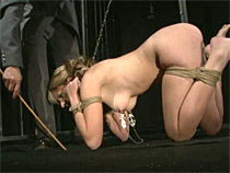 Dog slave from the cage