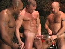 Gays testing vacuum pump
