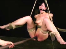 Elise Graves tied coupled..